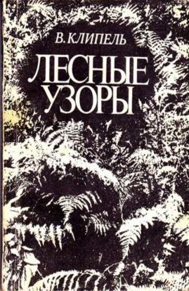 Владимир Клипель «Лесные узоры»
